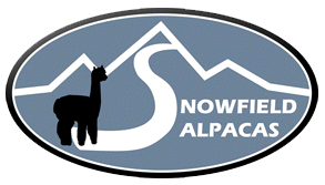Snowfield Alpacas