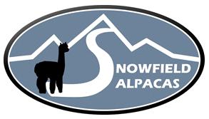 Snowfield Alpacas